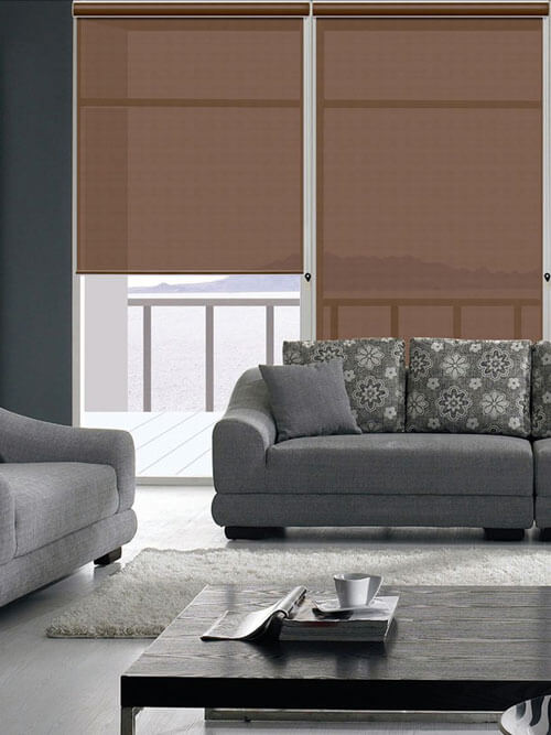 Roller Blinds In Modern Living Room Designs