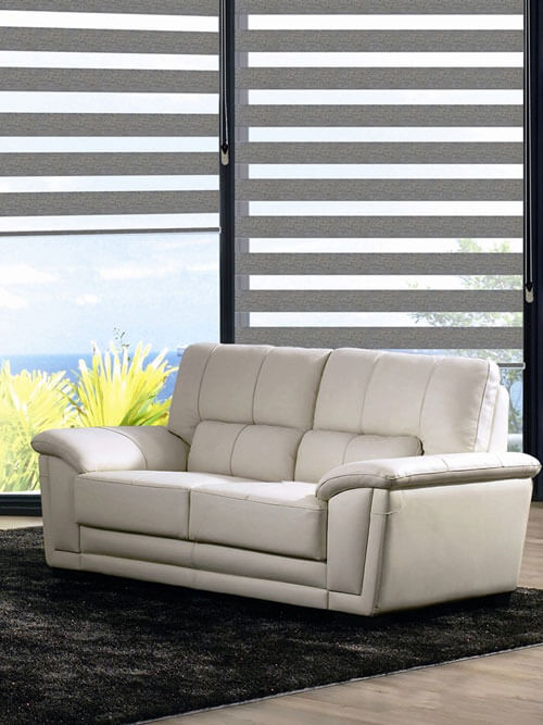 Zebra Blinds for Luxury House Decorating Ideas